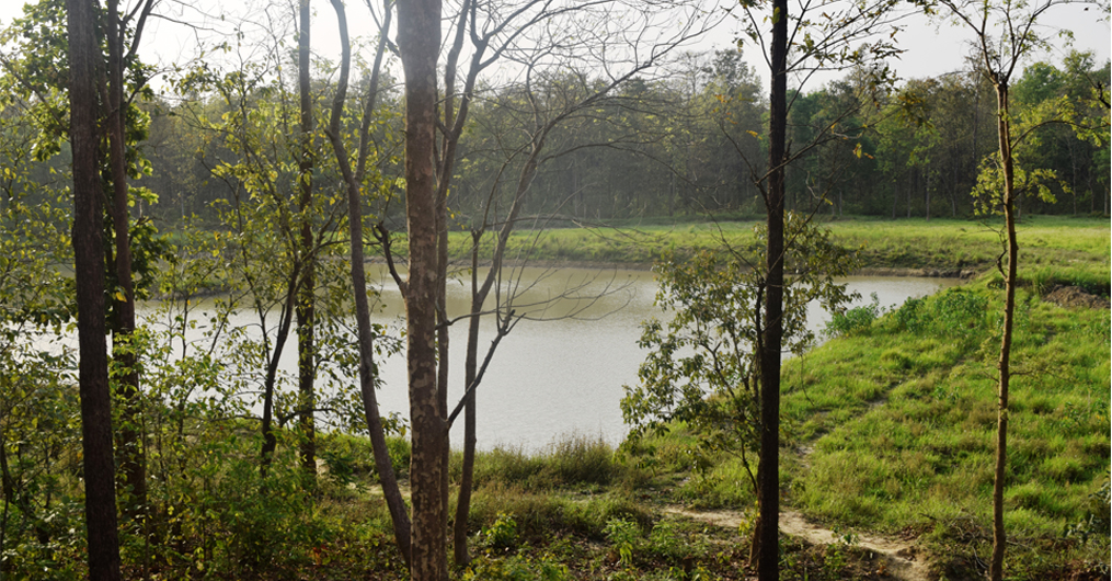 वन्यजन्तुलाई पानीको व्यवस्थापन गर्न बाँके निकुञ्जमा पानी पोखरी