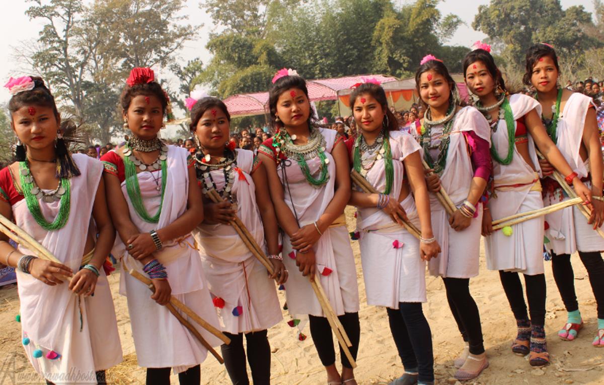 थारु संस्कृति संरक्षण गर्न फत्तेपुरमा माघी महोत्सव