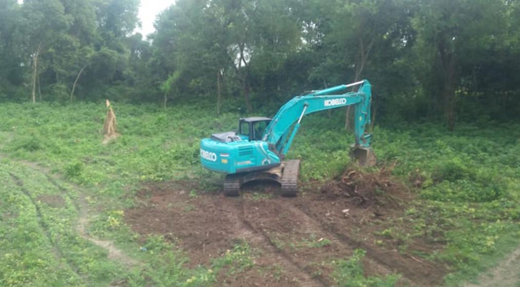बैजनाथमा अवैध वन फँडानी : वन कार्यालयले थाल्यो कारबाही, रुखका ठुटा गायव