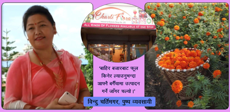 पुष्प व्यवसायी विन्दुको सफलता : भारतीय फूल विस्थापित गर्दै 'चर्ति फ्लोरा'